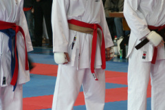 2007 Frühlingsturnier